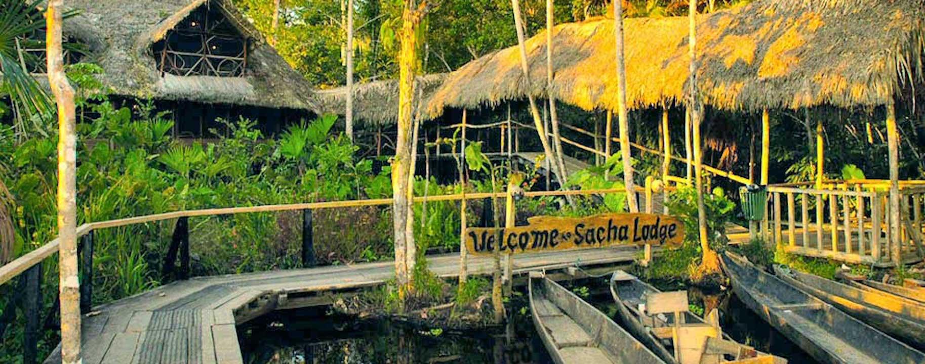 4D-3N Amazon Rainforest expedition / Plane , Boat , Hike / Ecuador Sacha Lodge